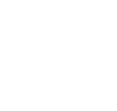 Boulon Plus logo